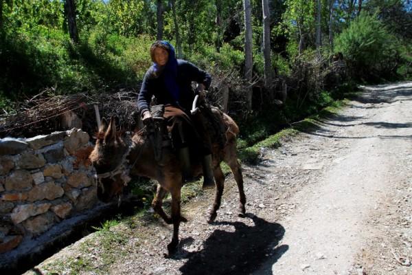 Foto: AFP / Gent Shkullaku / Selo Trebisht na istoku Albanije