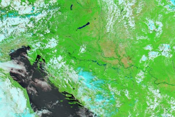 Poljoprivreda: klimatske promjene i klimave politike