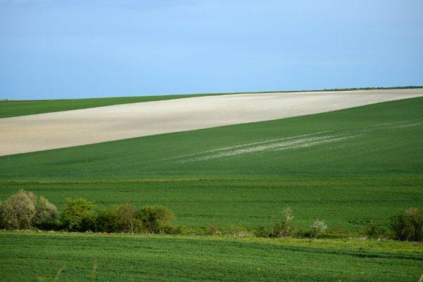 Kako poljoprivreda doprinosi klimatskim promjenama?