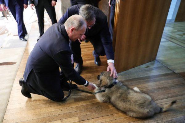 Spasiba za družbu: Putin za unutrašnju upotrebu