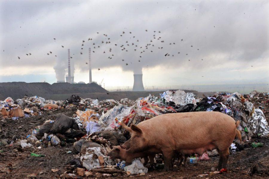 Dogodine počinje gašenje balkanskih elektrana na ugljen