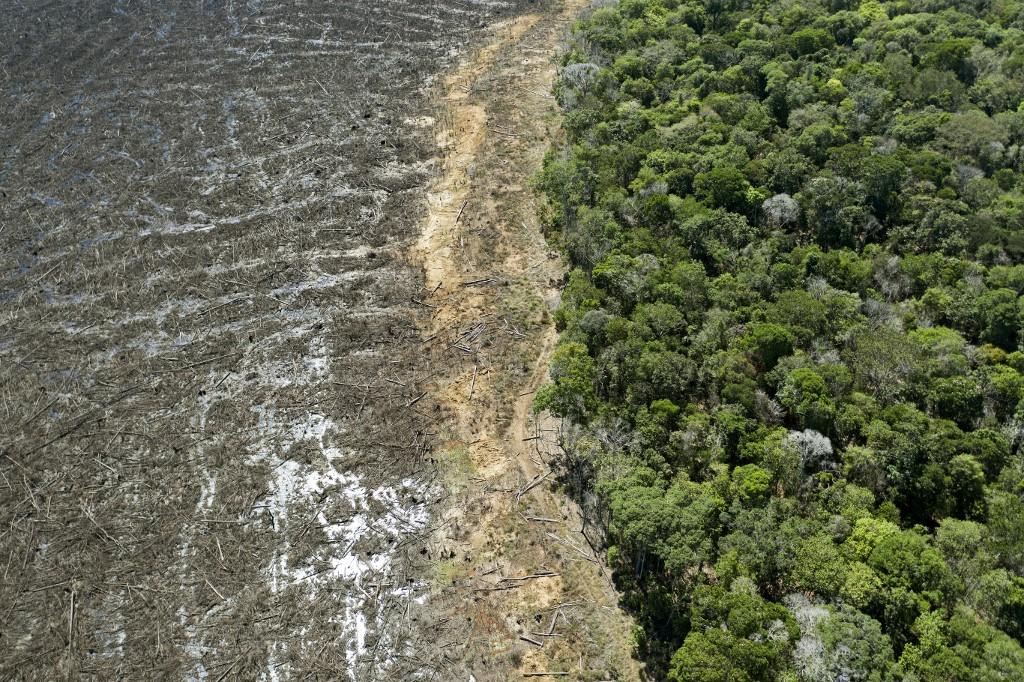 Od kolapsa bioraznolikosti do konačnog kraha globalne ekonomije