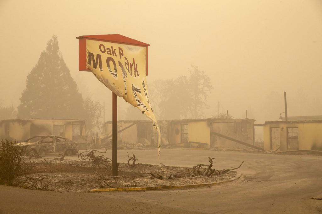 Polovica ljudi na planeti nije svjesna da klimatske promjene šire zarazne bolesti