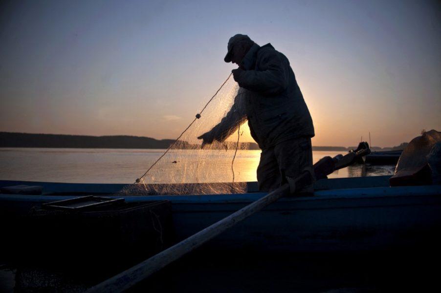 Izlov u Crnom moru postao kritičan