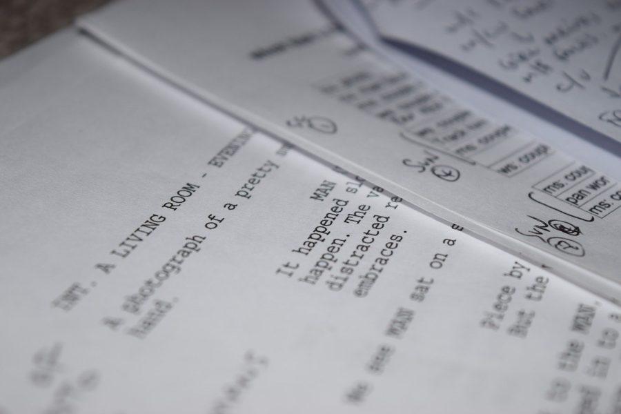 Objavljen prvi strukovni cjenik dramaturgije i izvedbenog pisanja
